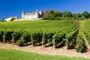 vin, du vin et plus de vin