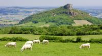 Acheter une propriété de rêve dans la Bourgogne du Sud