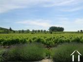 Mas Provençal restauré avec piscine et vue Ref # 43-1349 image 10