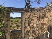 Propriété entourée des vignes ;vues sur Ventoux et Dentelles Ref # 11-2398 image 1
