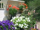 Villa de plain pied avec gîte et piscine Ref # 2343 image 10