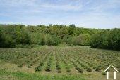 Charmante ferme morvandelle Ref # RT5091P image 15 Open views