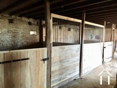 2 grands boxes à chevaux pour jument avec poulain