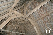 rare original roof structure