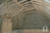 rare roof structure