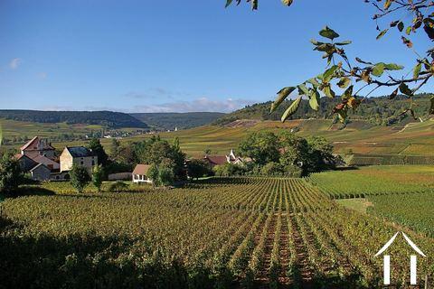 Bourgogne informations