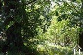 Petit paradis avec 3 hectares Ref # Li583 image 39