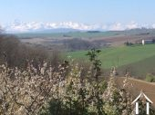 Fermette avec gîte et dépendances sur un terrain de 2ha et magnifique vue sur les Pyrénées. Ref # MP9050 image 44