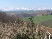 Fermette avec gîte et dépendances sur un terrain de 2ha et magnifique vue sur les Pyrénées. Ref # MP9050 image 2