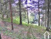 Grande maison de campagne aménagée en 2 habitations située sur un grand terrain de 5800m2 Ref # MP9078 image 7